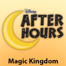 Disney After Hours no Magic Kingdom